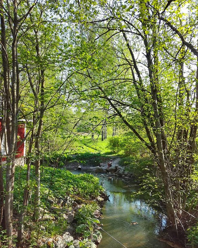 Näin idyllistä on Malmilla metsän keskellä. Oppaan kanssa kiersimme Longinoja-kierroksella.