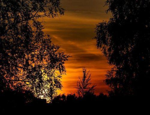 Kaunista iltaa ja mukavaa viikonloppua.