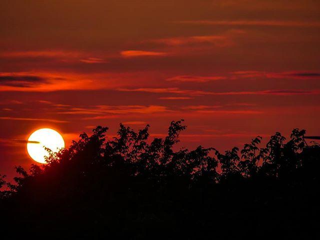 night-longinoja-love-helsinki-visithelsinki-visitfinland-finnishnature-finland-sky-nature-naturephot