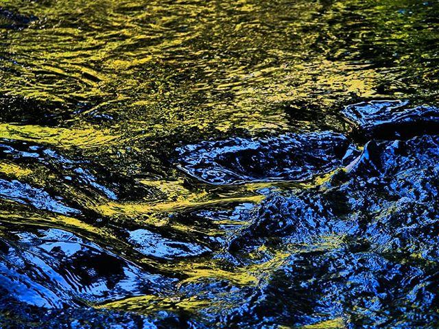 water-light-longinoja-helsinki-finland-visithelsinki-visitfinland-suomi-summer-luonto-lumix-luontoku-1