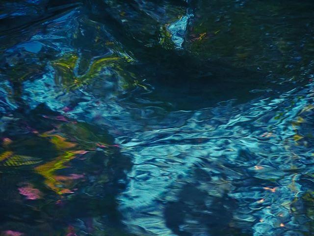 water-light-longinoja-helsinki-finland-visithelsinki-visitfinland-suomi-summer-luonto-lumix-luontoku