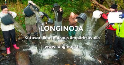 longinoja-kutusoraikonputsaus-amparilla-t