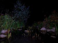 Longinoja yöllä.