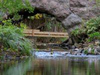 Muutama kuva purolta. Hienolta näyttää talkoilla kunnostetut alueet.