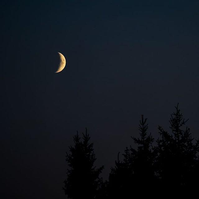 Hyvää yötä ystävät🌜