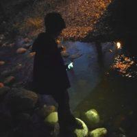 Illan pimetessä oli hyvä käydä bongaamassa Longinojan purolla kutevia taimenia. Hyvin niitä näkyikin: useita puolimetrisiä vonkaleita pyöri matalassa vedessä. En laskenut kaloja, mutta puroja kunnostaneet kertoivat, että purossa on 350 kalaa 100 metrin matkalla. Longinoja puroaktiivi Juha Salonen veti luontopolun avajaiskierroksen ja kertoi, kuinka kaikki alkoi. Salonen oli kurkkinut Malmilla viljelypalstojen viereisellä kävelysillalla alas puroon ja yllätyksekseen nähnyt siellä taimenen. Siitä kahden viikon kuluttua hän oli jo järjestänyt ensimmäiset puron kunnostustalkoot. Tänään, 17 vuoden ja tuhansien vapaaehtoistyötuntien jälkeen, vietettiin puron varren luontopolun avajaisia. Upeaa omistautumista ja upeaa työtä! Vinkki: Kannattaa ottaa kunnon taskulamppu mukaan, kännykän valo ei ihan riitä. Siellä on useampi kävelysilta, joiden vieressä on kutupaikkoja. longinoja.fi