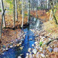 Malmin on yksi kuuluisimmista puroista. Täällä vaeltaa.