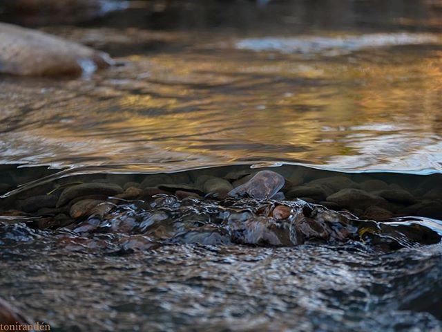 longinoja-puro-malmi-heijastus-helsinki-visithelsinki-finnishnature-finland-water-river-vesi-autumn-