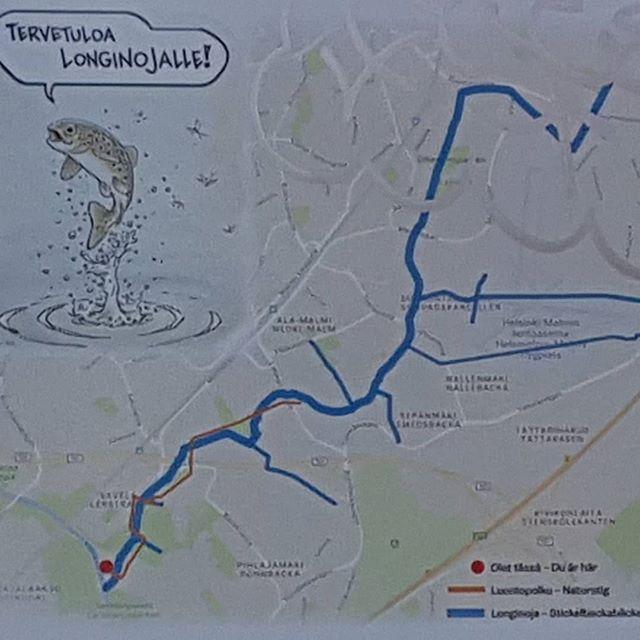 """Loppusyksyn kävelyretki Longinojan esteettömällä luontopolulla. Kahden kilometrin kulkee Vantaanjoelta Oulunkylästä Malmille. Kehä I:n ylittävä silta noin puolivälissä reittiä on jyrkkä, mutta sen voi kiertää Pukinmäen aseman kautta. / Winter """"walk"""" in to check out the new @longinoja between Malmi and Oulunkylä. The path is approx. 2km long. After 1km, travelling from Malmi end, there is a steep bridge which can be diverted via Pukinmäki train station."""