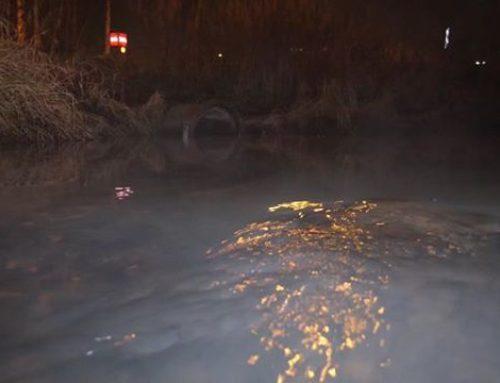 Savelassa viime yönä. Noussut vedenpinta ja puron päällä leijuva usva saivat kalat rohkeiksi.