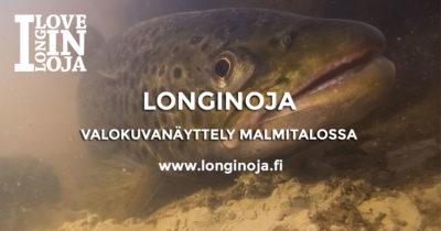 longinoja-valokuvanayttely