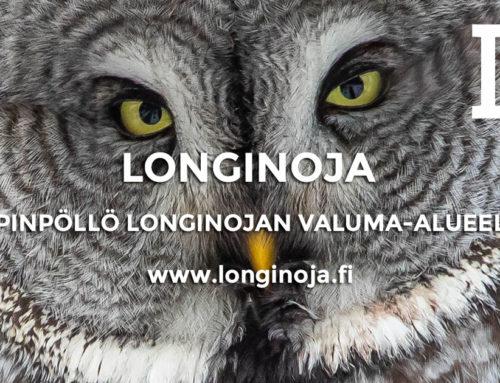 Lapinpöllö Longinojan valuma-alueella