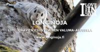longinoja-liito-orava-seppo-leinonen-4