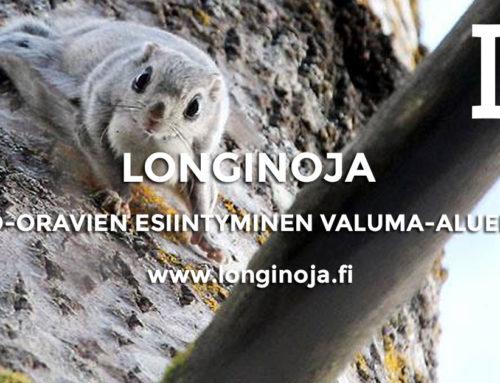 Liito-oravien esiintyminen Longinojan valuma-alueella