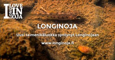longinoja-taimen-nollikas-2019-fb