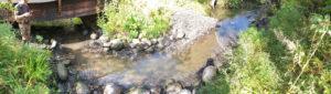 longinoja-savela-shell-jalkeen